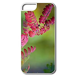 Colours Autumn IPhone 5 5s Case Cover - Customize Cool IPhone 5 5s Case For Couples
