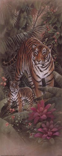 Tiger with Cubs by t.c. Chiu – 8 x 20インチ – アートプリントポスター LE_69734 B01MTT9IKW Unframed Print