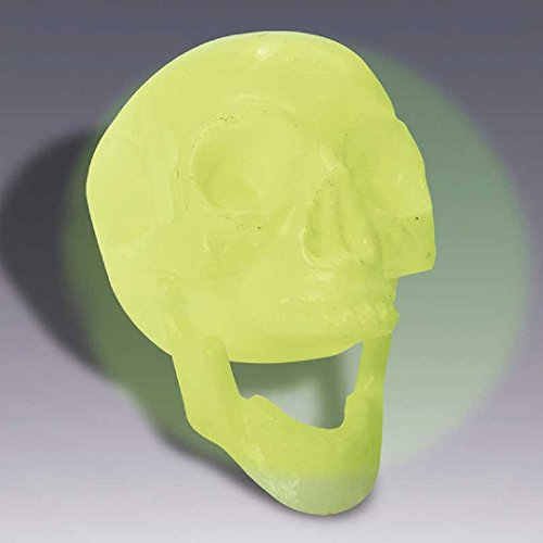 Glow in the Dark Skull Halloween