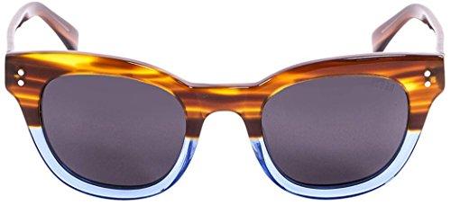 Brown/Blue/Smoke Santa Cruz Sunglasses by - Sunglasses Cruz Santa