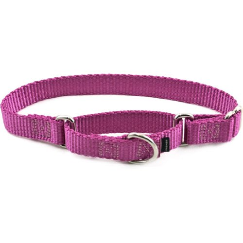 Premier Collar, Large 1-Inch, Dusty Rose, My Pet Supplies