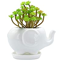 GeLive Elephant White Ceramic Succulent Planter Flower Plant Pot Window Box with Saucer Animal Decor (Mom Elephant)