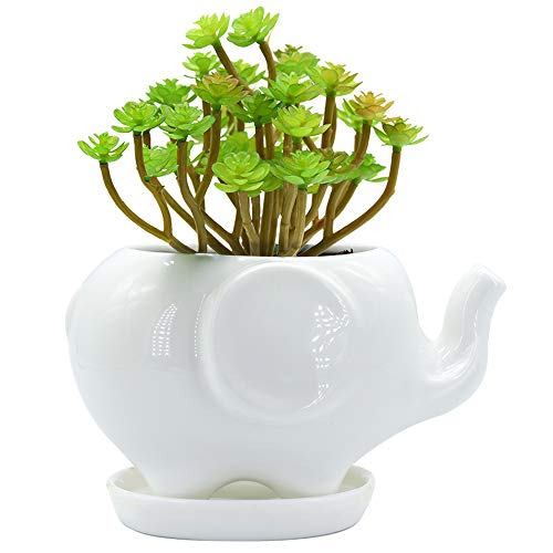 Elephant White Ceramic Succulent Planter