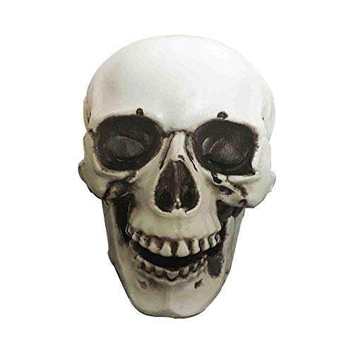 East Dream Halloween Skull Big Size Skull Haunted House Escape Horror Props Decorations Holiday Props 9.8 -