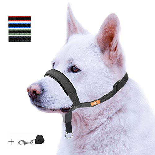Dog Head Collar with Padded Leather, Head Harness Stops Dog Pulling, Head Leash (L, Black)