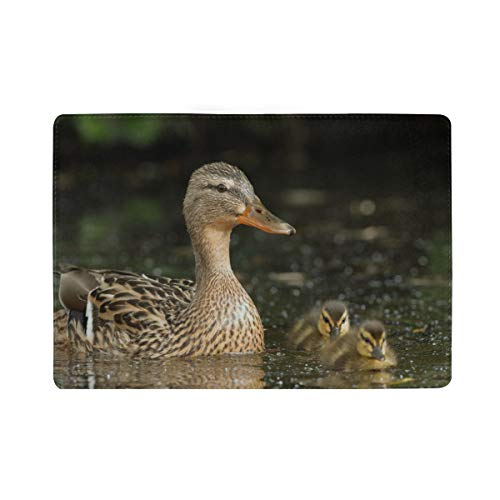 The Mallard Or Wild Duck On Branch Blocking Print Passport Holder Cover Case Travel Luggage Passport Wallet Card Holder Made With Leather For Men Women Kids Family