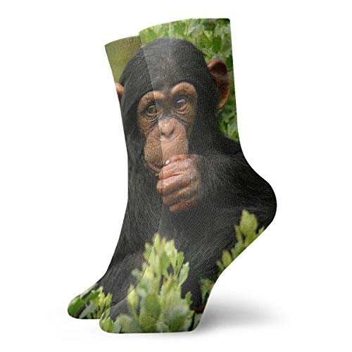 FriendEver Cute Monkey Chimpanzee Novelty Casual Socks,Combed Polyester Breathable Deodorant Crew Socks