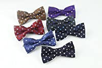 Flairs New York Polka Dots Collection Bow Tie & Pocket Square Matching Set