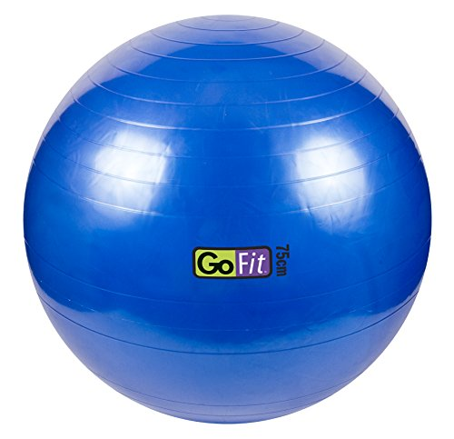 Exercise Stability Ball by GoFit Great for Stability, Health, Yoga, & Core Strength – DiZiSports Store