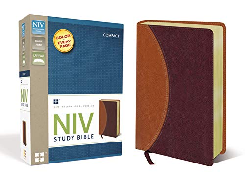 (NIV Study Bible, Compact, Imitation Leather, Tan/Burgundy, Red Letter Edition (Small Print) )