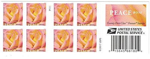 Peace Rose USPS Forever Stamp (1 Booklet, 20 Stamps) ()