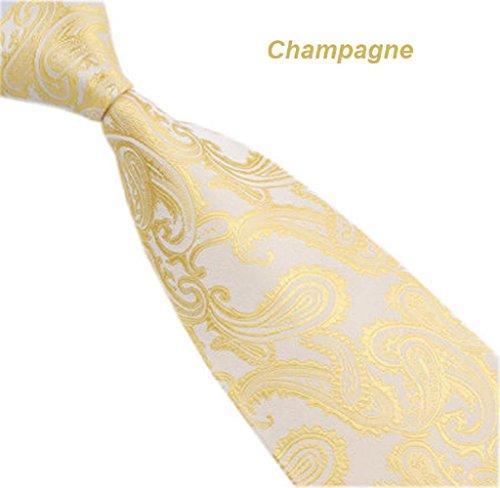 Korean Tie (Singleluci New Classic Paisley Mix Color Necktie JACQUARD WOVEN Silk Men's Tie (Champagne))
