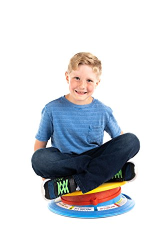 Dizzy Disc Jr. Sit and Spin Disk for 8+ year olds up to 200 lbs. Balance, Coordination, Spatial Awareness and Sensory Stimulation Portable