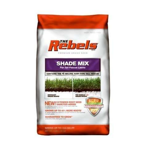 Pennington FESCUE TALL SHADE MIX PCG 20LB
