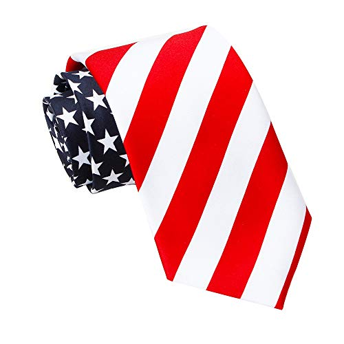 Amzcoice Classic American Flag Necktie USA Flag US Patriotic Neck Tie (169)