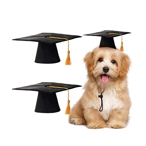 2 Pieces Pet Graduation Caps Small Dog Graduation Hats with Yellow Tassel Pet Graduation Costume for Dogs Cats Holiday Costume Accessory 1