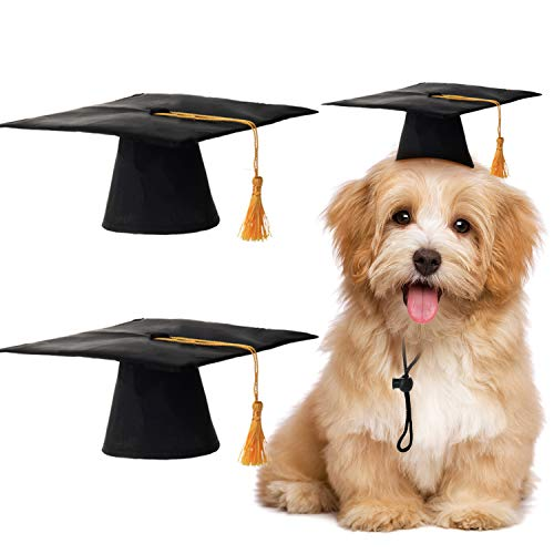 2 Pieces Pet Graduation Caps Small Dog Graduation Hats with Yellow Tassel Pet Graduation Costume for Dogs Cats Holiday Costume ()