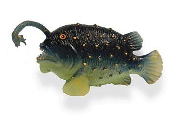 feeders Deepsea bottom