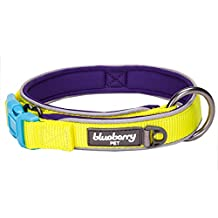 """Blueberry Pet Soft & Comfy Summer Hope 3M Reflective Padded Dog Collar with O-Ring, Fluorescent Yellow, Small, Neck 12""""-16"""", Adjustable Collars for Dogs"""