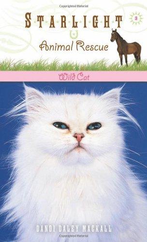 Wild Cat (Starlight Animal Rescue)