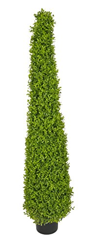 House of Silk Flowers Artificial 4-Foot Lt Green Boxwood Pyramid Topiary