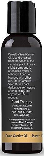 Plant Therapy Camellia Seed Carrier Oil. 2 oz. A Base Oil for Aromatherapy, Essential Oil or Massage Use. (Pack of 12)