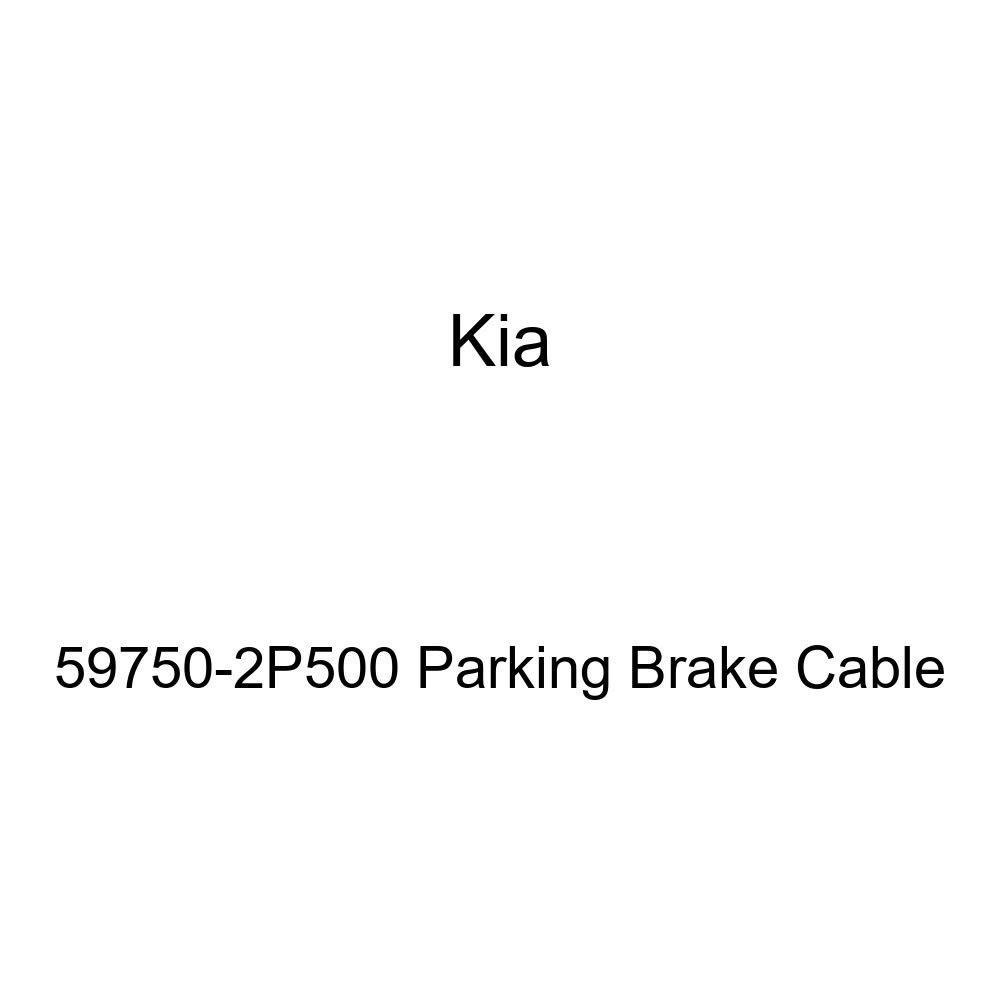 Pink Hose /& Stainless Purple Banjos Pro Braking PBR9332-PNK-PUR Rear Braided Brake Line