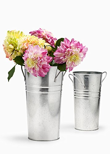 Amazon.com: Standard Zinc French Vase (7in H x 4in D): Home & Kitchen