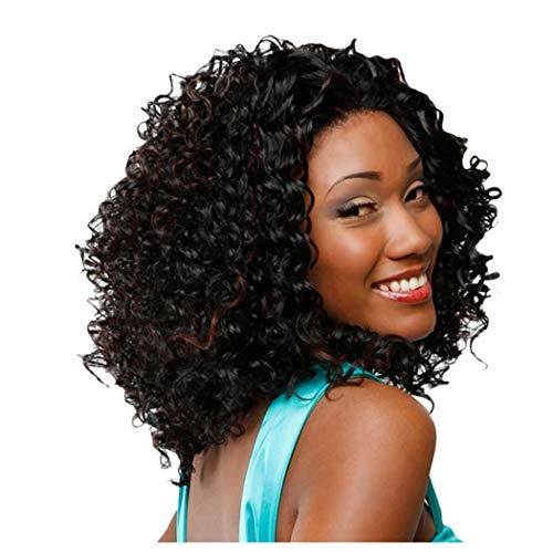 Inkach Afro Wigs for Black Women Short Kinky Curly Full Wigs Heat Resistant Synthetic Fiber Hair Cosplay Party Hairpiece for African Woman Human Hair (Multicolor) ()