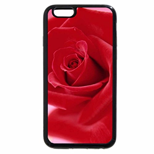 iPhone 6S Case, iPhone 6 Case (Black & White) - red red rose rose pink nice