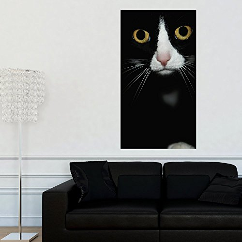 Cheap  Cat Photography Wall Sticker Decal - Are You Looking at Me by..