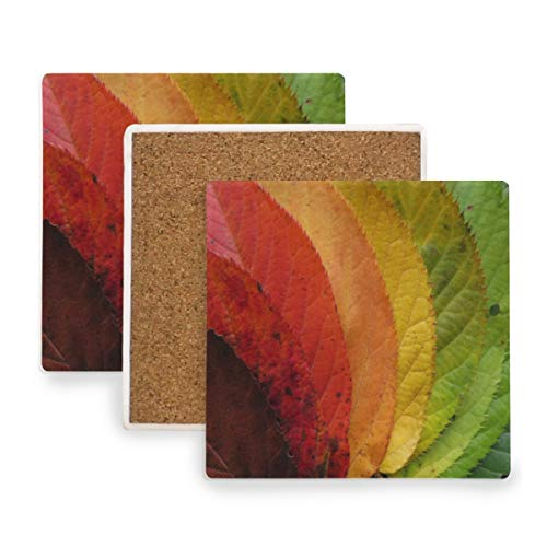 Large Square Drink Coasters,Colorful Fall Leaves Ceramic Thirsty Stone With Cork Back Cup mats Protect Your Furniture From Spills, Scratches, Water Rings and Damage 4pcs