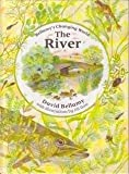 img - for The River (David Bellamy's Changing World) book / textbook / text book