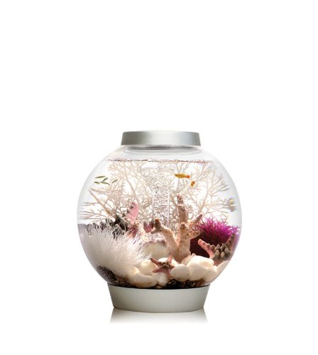 (biOrb CLASSIC 15 Aquarium with LED Light - 4 Gallon, Silver)