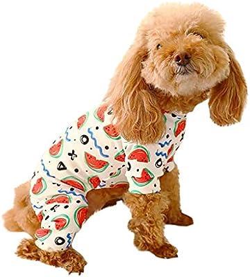 Moderno y cómodo Disfraz de Cachorro, Ropa para Perros, Hawkimin ...