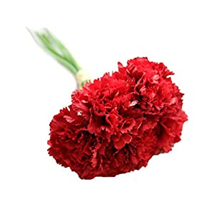 RBwinner Artificial Silk Flower Carnation 6 Heads/Bouquet for Wedding Party Home Decoration(bright red) 2