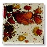 Sax True Flow Colorburst Glazes - 1 Pint - Sand Petal
