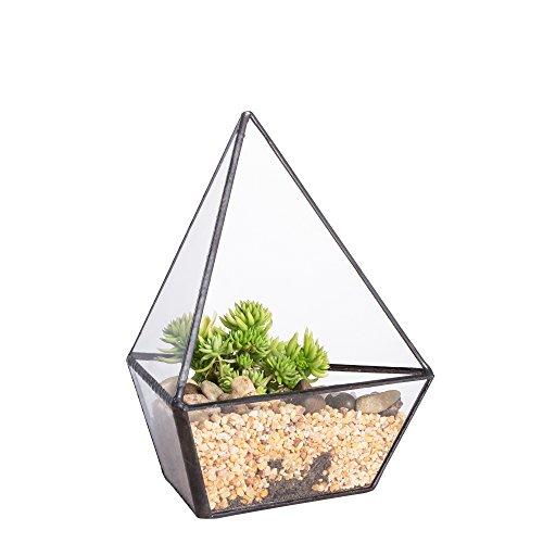 NCYP Modern Three Sides Glass Geometric Terrarium Garden Small Black Air Plants Holder Containers Balcony Display Succulent Fern Moss Flower Pots for Bonsai