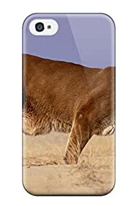 QUYFDeS1004lStyr Lion Wallpaper Fashion Tpu 6 plus 5.5 Case Cover For Iphone