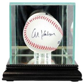 glass bat display case - 3