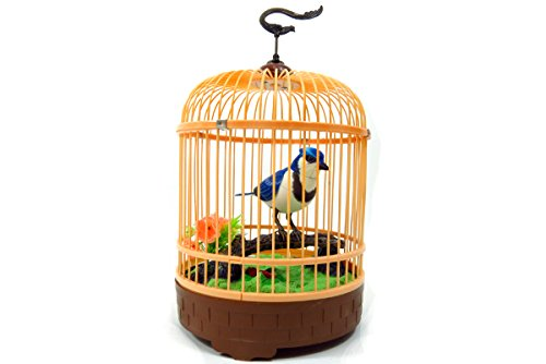 Realistic Singing & Chirping Blue Bird in Cage