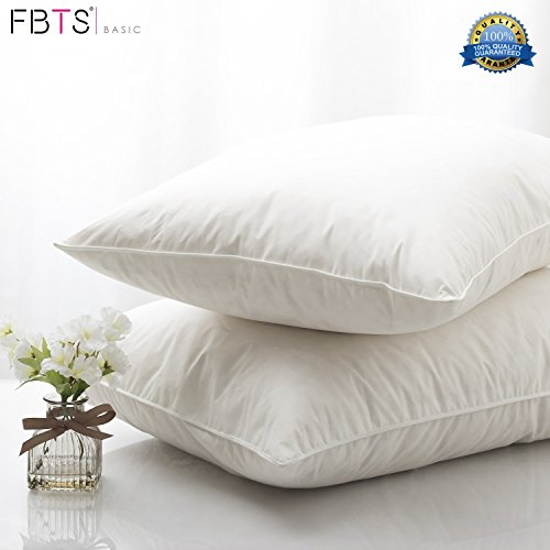 FBTS Basic 95% Feather 5% Down Pillow Inserts (2-Pack) 18 x 18 Square Sham Stuffer Premium Hypoallergenic Form Cotton Down Proof Shell Decorative Cushion Sofa and Bed Pillows