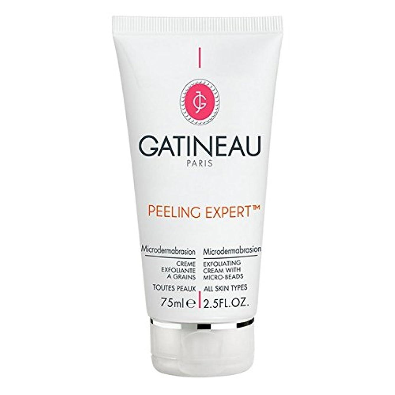 経営者維持コンテンツGatineau Pro-Radiance Microdermabrasion Cream 75ml (Pack of 6) - ガティノープロ輝きマイクロダーマブレーションクリーム75ミリリットル x6 [並行輸入品]