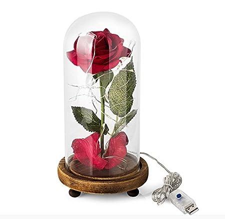 arekeke Rosa Bella y Bestia, La Bella y la Bestia Rose Kit Completo y luz LED en cúpula de Cristal sobre una Base de Madera para la decoración, Boda, ...