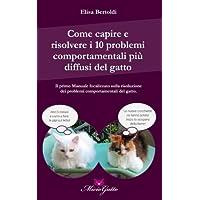 Come Capire E Risolvere I 10 Problemi Comportamentali Più Diffusi Del Gatto