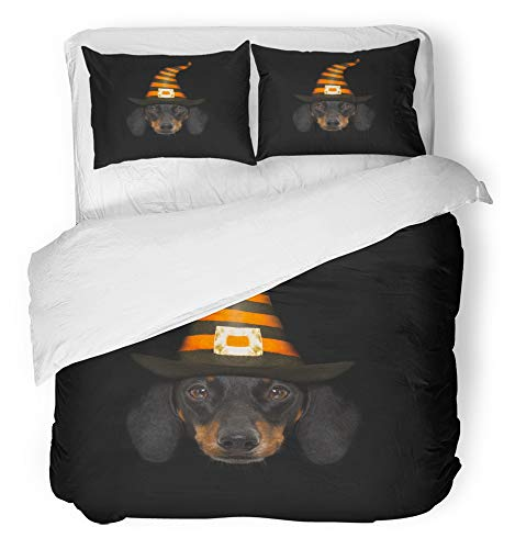 Emvency 3 Piece Duvet Cover Set Breathable Brushed Microfiber Fabric Halloween Devil Sausage Dachshund Scared and Frightened Black Wearing Witch Hat Bedding Set with 2 Pillow Covers King Size