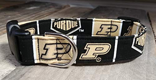 Purdue Boilermakers dog collar buckle or martingale with leash set option