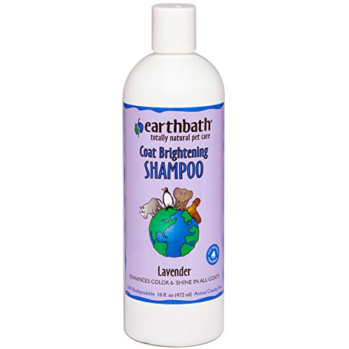 Earthbath All Natural Light Color Coat Brightener Shampoo, 16-Ounce (Brightener Color Coat Light)