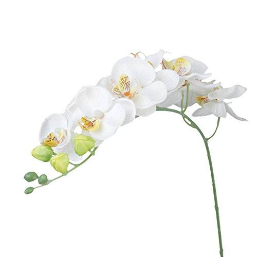 WINOMO Simulation Waldhyazinthe künstliche Blume Pflanze Home Dekoration (weiß)