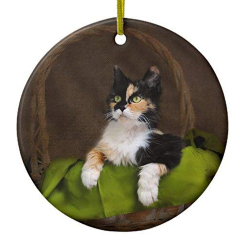 Jared Christmas Tree Ornament Calico Kitty Cat in Basket Classic Photo Ornament Circle BH578942